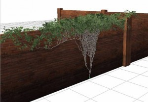 Creare un rampicante con ivy generator 3