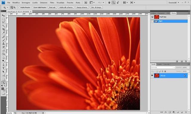 Photoshop Cs4 Concetti Di Pixel Dpi E Ricampionamento